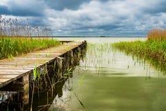 Landningetapp på en sjö med vasser Arkivfoton