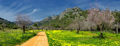 Lands of raixa Royalty Free Stock Images