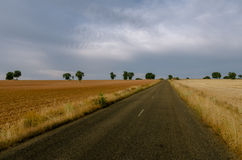 Lands of zamora (spain) Stock Photography