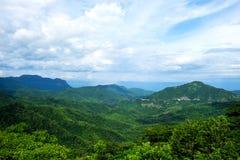 Landsacpe da montanha florestado com a nuvem Imagem de Stock Royalty Free