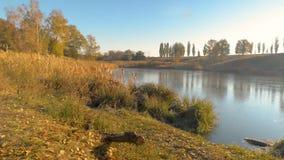 Landsape do rio no outono filme