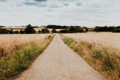 Landsape in England. Suffolk region Royalty Free Stock Image