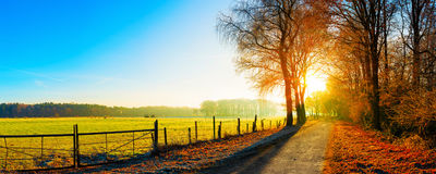 Landsape with road in autumn. Landscape in autumn, road next to a pasture at sunrise Stock Images
