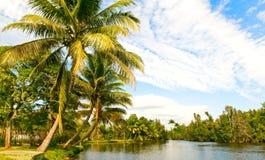 Landsape tropical Foto de archivo libre de regalías