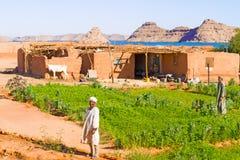Landsbygd nära sjön Nasser i sydliga Egypten Fotografering för Bildbyråer
