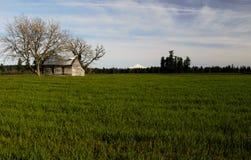 Landsbygdsboende på dess bästa Royaltyfri Foto