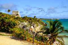 Landsca view of Tulum pyramid ruins with ocean coast. And flying birds, Tulum, Mexico stock images