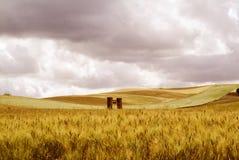 Landscaipe Стоковое фото RF
