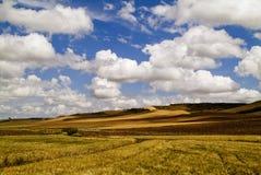 Landscaipe Photographie stock