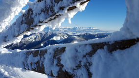 Landscaoe hermoso del invierno en Cárpatos Foto de archivo