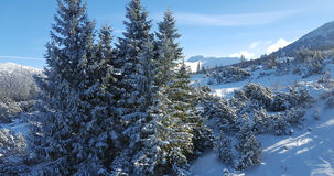 Landscaoe hermoso del invierno en Cárpatos Fotos de archivo