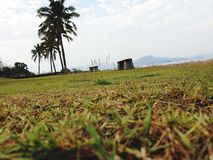 landscap и ясное небо стоковая фотография