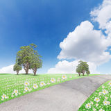 The landscap blue sky with clouds and tree on grass Royalty Free Stock Image