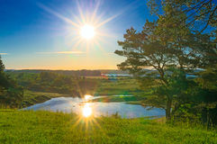 Landscape湖和森林 免版税库存照片
