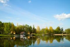 Landscape湖森林反射 免版税库存照片