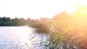 Landscape湖 水纹理 湖在黎明 嘴 免版税图库摄影