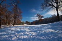 landscape зима Стоковые Изображения