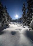 landscape зима Стоковое Фото