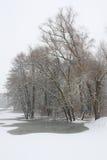 landscape зима Стоковое Изображение RF