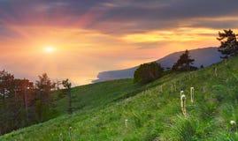landscape лето стоковая фотография rf