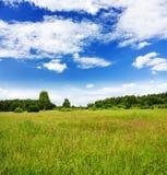landscape лето Стоковые Изображения RF