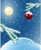 landscape лунная зима Стоковые Фото