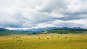 landscape Монгол Стоковые Фото