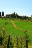 landscape Тоскана Стоковое Фото