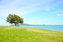 Landscape. A beautiful landscape on blue sky backgound stock photo