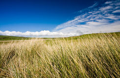 Landscape. With dramatic cloud formations Stock Image