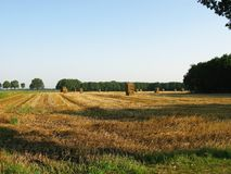 Landscape. A landscape with straw bales royalty free stock image