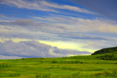 Landscape. Green grassland and stormy clouds Stock Images
