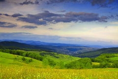 Landscape. Green grassland and stormy clouds Royalty Free Stock Photography