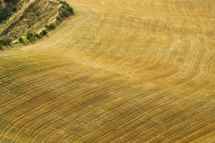 Aerial view of fields Stock Images
