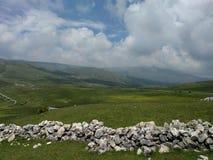 Landscape1 imagem de stock