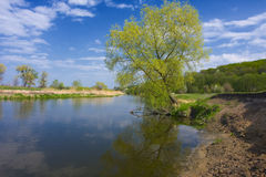 Landscape. Beautiful summer landscape with river Royalty Free Stock Photo