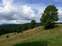 Landscape. Tatra Mountains landscape royalty free stock photos