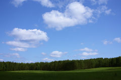 Landscape. Wood glade, the blue sky with clouds Stock Image
