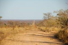 Landscape. At Krugerpark South Africa Stock Image