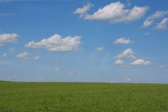 Landscape. Green meadow and horizont with clouds Royalty Free Stock Photos
