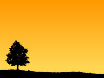 Landscape 2. Illustrated Tree and sky against a beautiful orange sunset. Built to Powerpoint proportions stock illustration