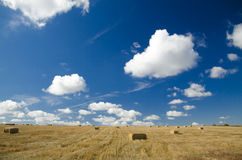 Landscape. Straw bale on a summer stubble field stock photos