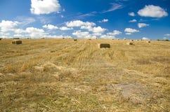 Landscape. Straw bale on a summer stubble field Stock Photo
