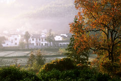 Free Landscape Stock Image - 22284331