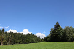 Landscape. Lnadscape containing a meadow, forest and sky Stock Photography