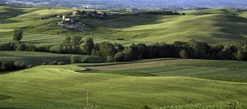 Landscape. A nice view of italian landscape Royalty Free Stock Image