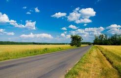 Free Landscape Stock Photography - 2663062