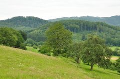 Landscape Royalty Free Stock Photos