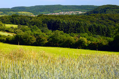 Landscape. With rye and barley field and forest in the distance a country Dueppenweiler, by Honzrath, Saarland / Germany Stock Image