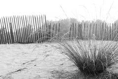 Landscape. Of the Lommelse desert, Belgium Stock Photos